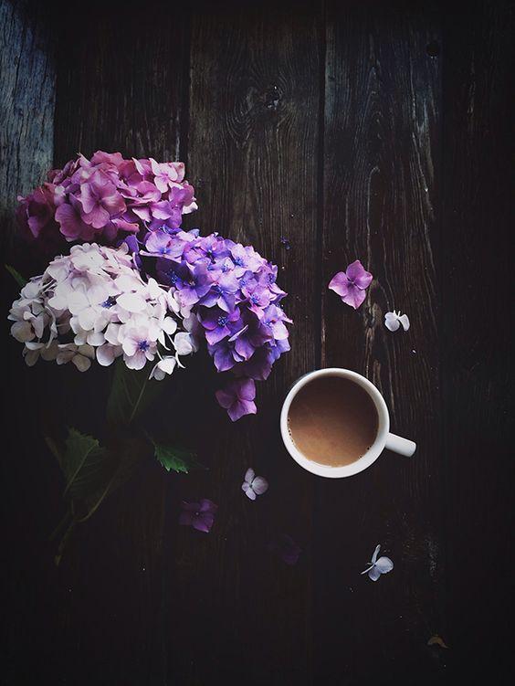 hydrangeas-and-coffee