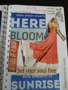 bloom vision