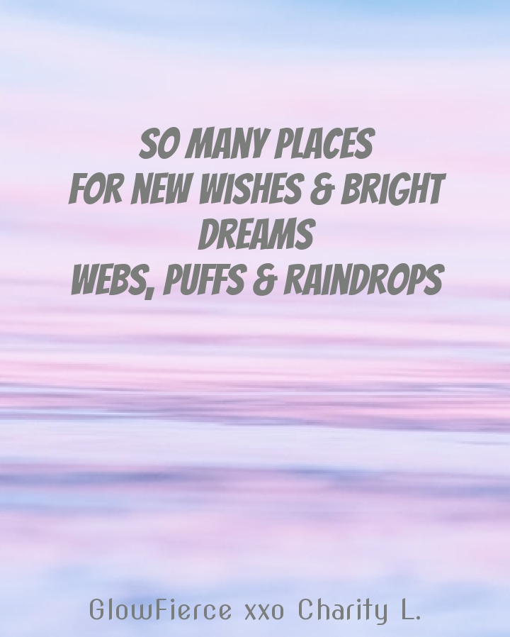 so many places for new wishes & bright dreams webs, puffs & raindrops on a backdrop of the sea